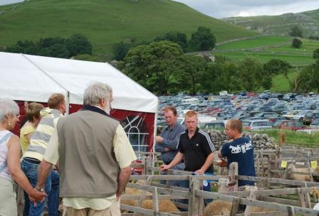 Malham Show, Blue Faced Leicester Sheep Pens, photo Chris Wildman