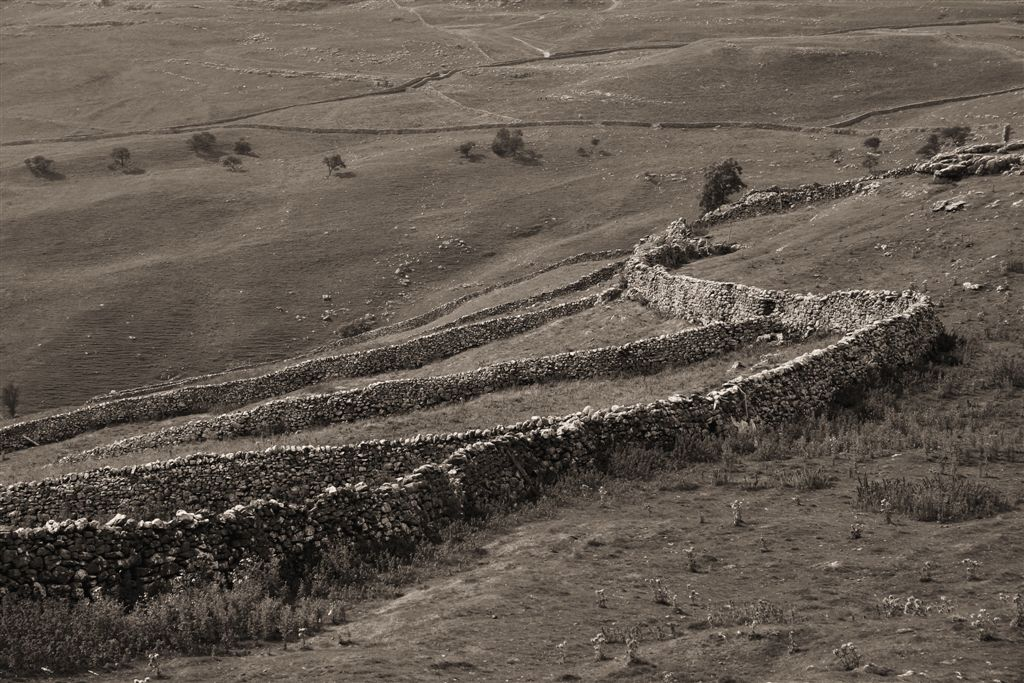 Limestone drystone walls and Field system, sepia, Malham, Yorkshire Dales by Matt Jackson Life's Images